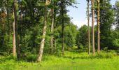 Randonnée Marche LACROIX-SAINT-OUEN - en forêt de Compiegne_16_Boquet Gras_Béthisy_Prés du Rosoir - Photo 35