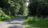 Randonnée Marche LACROIX-SAINT-OUEN - en forêt de Compiegne_16_Boquet Gras_Béthisy_Prés du Rosoir - Photo 79