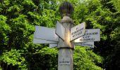 Randonnée Marche LACROIX-SAINT-OUEN - en forêt de Compiegne_16_Boquet Gras_Béthisy_Prés du Rosoir - Photo 97