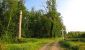 Randonnée Marche LACROIX-SAINT-OUEN - en forêt de Compiegne_16_Boquet Gras_Béthisy_Prés du Rosoir - Photo 121
