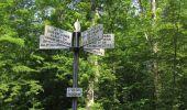 Randonnée Marche LACROIX-SAINT-OUEN - en forêt de Compiegne_16_Boquet Gras_Béthisy_Prés du Rosoir - Photo 58