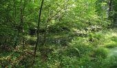 Randonnée Marche LACROIX-SAINT-OUEN - en forêt de Compiegne_16_Boquet Gras_Béthisy_Prés du Rosoir - Photo 73