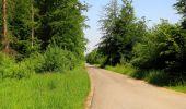 Randonnée Marche LACROIX-SAINT-OUEN - en forêt de Compiegne_16_Boquet Gras_Béthisy_Prés du Rosoir - Photo 54