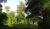 Randonnée Marche LACROIX-SAINT-OUEN - en forêt de Compiegne_16_Boquet Gras_Béthisy_Prés du Rosoir - Photo 104