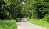 Randonnée Marche LACROIX-SAINT-OUEN - en forêt de Compiegne_16_Boquet Gras_Béthisy_Prés du Rosoir - Photo 61