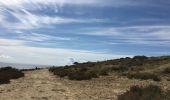 Trail Walk Alacant/Alicante - Playa de San Juan to Alicante - Photo 27