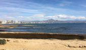 Trail Walk Alacant/Alicante - Playa de San Juan to Alicante - Photo 24