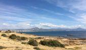 Trail Walk Alacant/Alicante - Playa de San Juan to Alicante - Photo 22