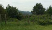 Trail Mountain bike SAINT-ETIENNE-DU-GRES - [PAT] Rando Saint Martin Du Grès Les Baux De Provence - Photo 1