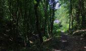 Randonnée Marche Huy - Huy 23 km  - Photo 6