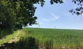 Randonnée Marche Huy - Huy 23 km  - Photo 5