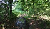 Randonnée Marche Huy - Huy 23 km  - Photo 3