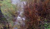 Randonnée Marche Beauraing - Winenne-Dion--Dion le Val- Bouquau-Winenne - Photo 1