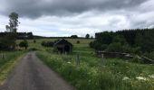 Trail Walk Paliseul - Balade de Maissin au hameau de Lesse - Photo 1
