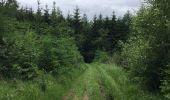 Trail Walk Paliseul - Balade de Maissin au hameau de Lesse - Photo 2
