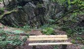 Trail Walk Paliseul - Balade de Maissin au hameau de Lesse - Photo 5