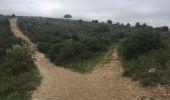 Trail Walk Arguedas - tour du parc animalier - Photo 4