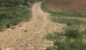 Trail Walk Arguedas - tour du parc animalier - Photo 13
