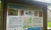 Trail Walk Onhaye - FALAËN ...  par les ruines du Château de Montaigle. - Photo 5