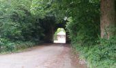 Trail Walk Onhaye - FALAËN ...  par les ruines du Château de Montaigle. - Photo 4
