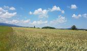 Trail Cycle Litvínovice -  - Photo 12