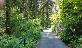 Trail Cycle Litvínovice -  - Photo 9