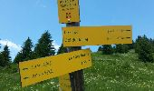 Trail Walk MEGEVE - MEGEVE (le Pâtit Croisse Baulet) - Photo 3