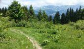 Trail Walk MEGEVE - MEGEVE (le Pâtit Croisse Baulet) - Photo 1