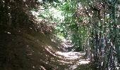 Trail Walk COMBLOUX - COMBLOUX (Vers le Châble). - Photo 1