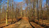 Trail Walk PIERREFONDS - en forêt de Compiègne_24_Tournantes sur le Voliard et sur la Fortelle_chaussée Brunehaut - Photo 49