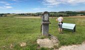 Randonnée Marche Yvoir - Durnal / 2020-07-19 - Photo 15
