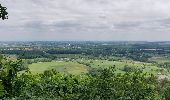 Trail Walk ERNOLSHEIM-LES-SAVERNE - 2019-05-30 Marche Mt St Michel Ernolsheim les Saverne Reel - Photo 19