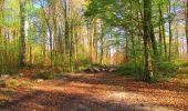 Randonnée A pied VILLERS-COTTERETS - le GR11A  dans la Forêt de Retz  - Photo 64