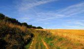 Randonnée Marche HARAMONT - en forêt de Retz_79_08_2019_vers Taillefontaine et Retheuil par les lisières - Photo 32