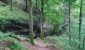 Trail Walk ERNOLSHEIM-LES-SAVERNE - 2019-05-30 Marche Mt St Michel Ernolsheim les Saverne Reel - Photo 26