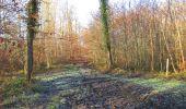 Trail Walk SAINT-JEAN-AUX-BOIS - en forêt de Compiègne_33_12_2019_les Tournantes de l'étang Saint-Jean et des Prés Saint-Jean - Photo 19
