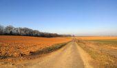 Trail Walk RETHEUIL - en forêt de Retz_76_dans les forêts de Retz et de Compiègne - Photo 49