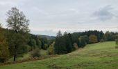 Randonnée Marche La Roche-en-Ardenne - Ramee  - Photo 14