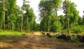 Randonnée Marche COYOLLES - en forêt de Retz_78_les rayons du Rond Capitaine - Photo 50