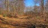 Trail Walk PIERREFONDS - en forêt de Compiègne_24_Tournantes sur le Voliard et sur la Fortelle_chaussée Brunehaut - Photo 141