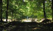 Trail Walk DAMPLEUX - en forêt de Retz_80_sur la Route Tortue et la Route Droite - Photo 181