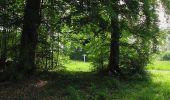 Randonnée Marche COYOLLES - en forêt de Retz_78_les rayons du Rond Capitaine - Photo 104