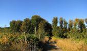 Trail Walk DAMPLEUX - en forêt de Retz_80_sur la Route Tortue et la Route Droite - Photo 103