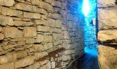 Randonnée Marche SUMENE - de cezas au prieuré aux cagnasse aux mont la fage - Photo 7