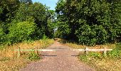 Randonnée Marche LACROIX-SAINT-OUEN - en forêt de Compiègne_35_la Croix Saint-Sauveur_le Ru du Goderu - Photo 70