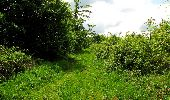 Randonnée Marche COYOLLES - en forêt de Retz_78_les rayons du Rond Capitaine - Photo 139
