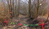 Trail On foot VIEUX-MOULIN - en forêt de Compiègne_23_la Grotte des Ramoneurs_le Mont Berny - Photo 76