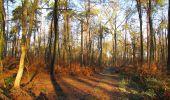 Trail Walk SAINT-JEAN-AUX-BOIS - en forêt de Compiègne_33_12_2019_les Tournantes de l'étang Saint-Jean et des Prés Saint-Jean - Photo 99
