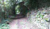 Trail Walk SENTHEIM - Sentheim Rossberg - Photo 26