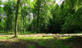 Randonnée Marche COYOLLES - en forêt de Retz_78_les rayons du Rond Capitaine - Photo 25